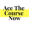 Ace The Course Now tutors SAT Verbal in Beirut, Lebanon
